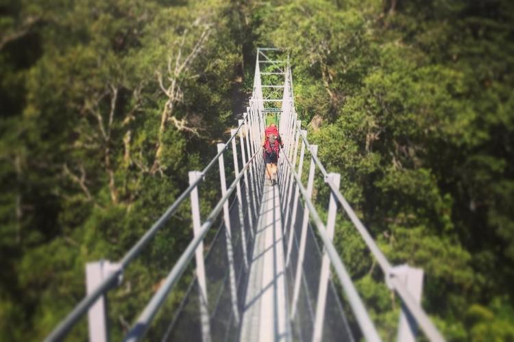 Top 7 des sports de montagne: Trekking